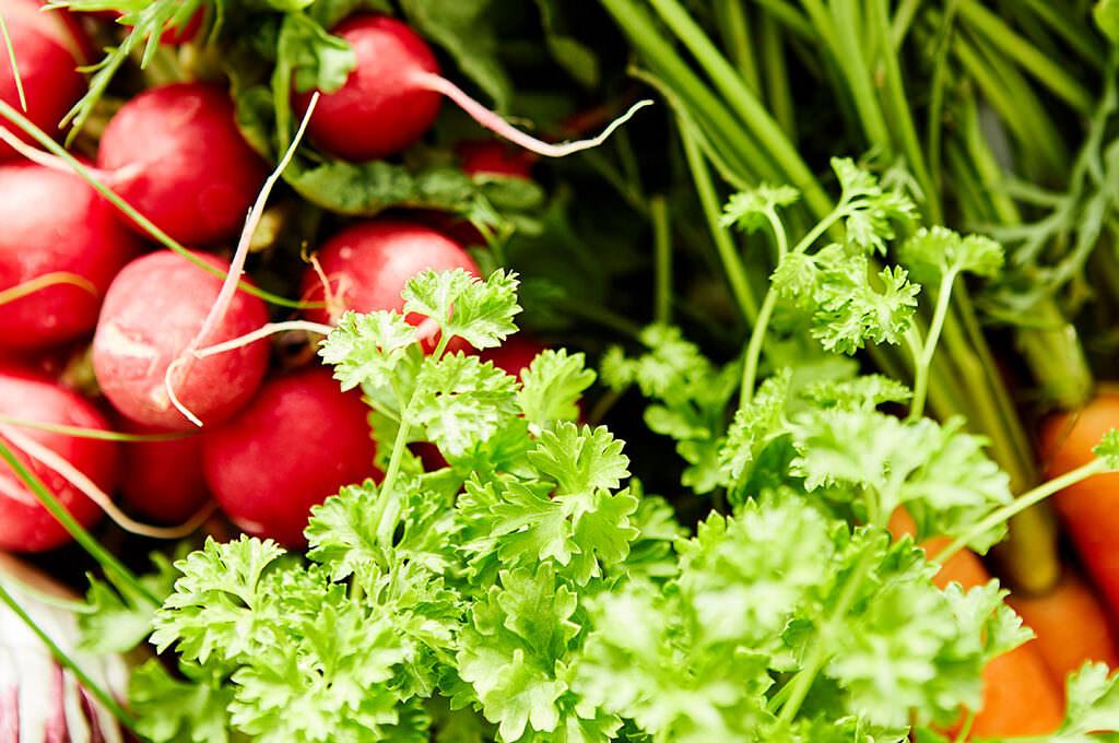 Optimale Gehirnernährung, Maria Rosner – Ernährungsberaterin ganzheitlich is(s)t anders